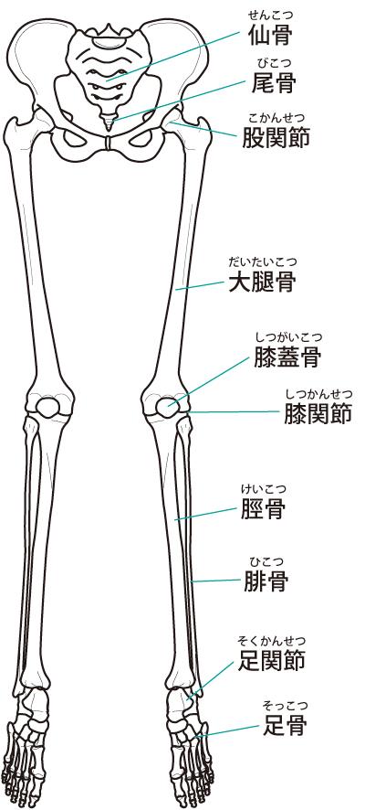 当院での足底筋膜炎に対する整体施術